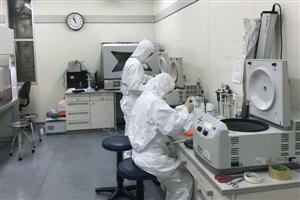Phát hiện 3 biến thể virus gây dịch Covid-19 ở Việt Nam